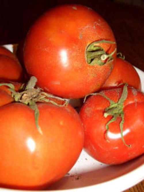 Tomatoes_in_bowl